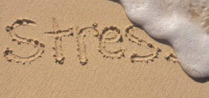 Master ECM in Tecniche di Rilassamento e riduzione dello stress
