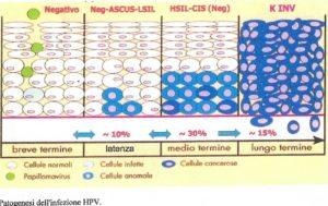 hpv alto rischio trasmissione